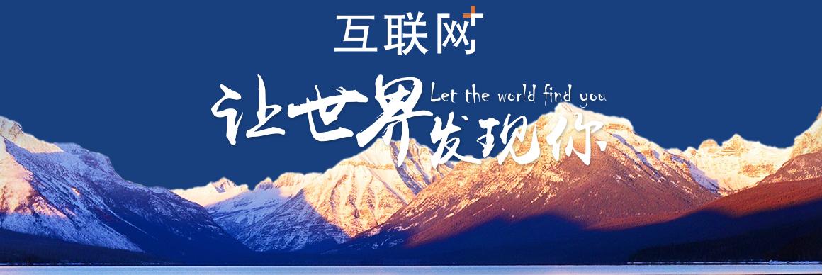 北京望京网站建设公司