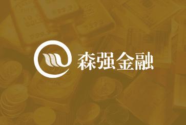 网站建设公司金融建站