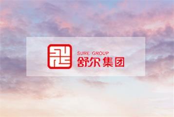 北京网站制作公司集团案例